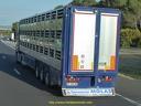 Culs de camion